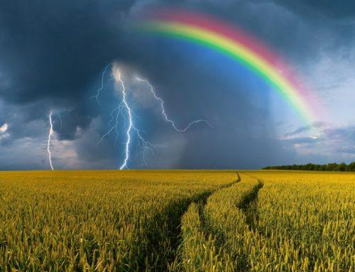 Onderzoek fiscale klimaat- en calamiteitenreserve land- en tuinbouw